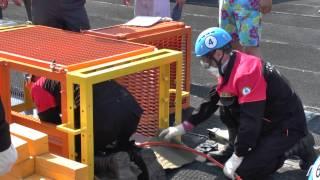 Соревнования нештатных спасательных групп 2015