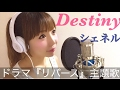 【フル歌詞付き】Destiny/シェネル (ドラマ『リバース』主題歌)-cover