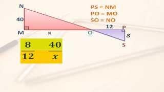 Triangulos semejantes y proporcionalidad
