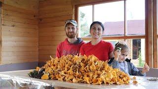 Грибы собрали картофель убрали тумбы залили