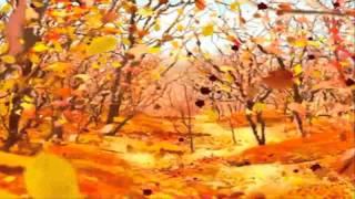 Футажи Осень