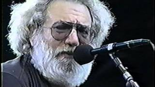 Grateful Dead RFK Stadium, Washington 6/20/92 1st Set Pro Shot