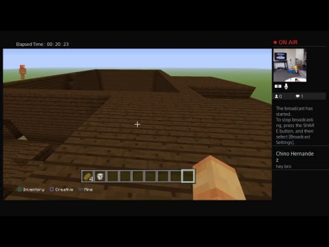Playing minecraft granny world