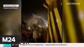 Пассажирский самолет развалился на части при посадке в Индии - Москва 24