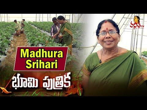 Woman Farmer Madhura Srihari Success Story || 50 Lakhs Profit In a Year || Bhoomi Putrika