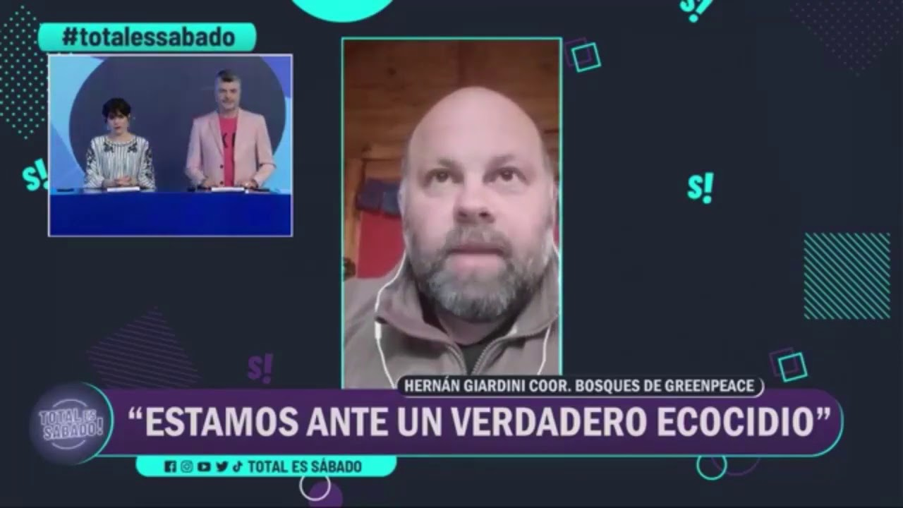 "Para Greenpeace, ""los incendios de Córdoba son un ecocidio"""