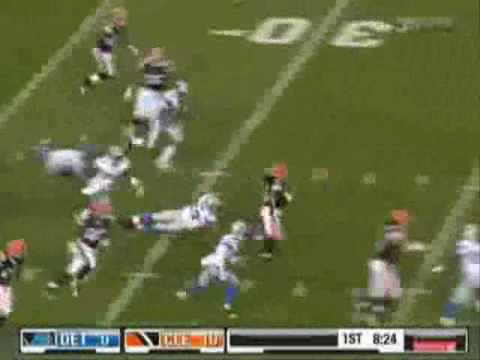 Josh Cribbs Career Highlights