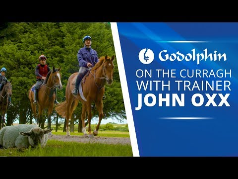 On the Curragh with John Oxx