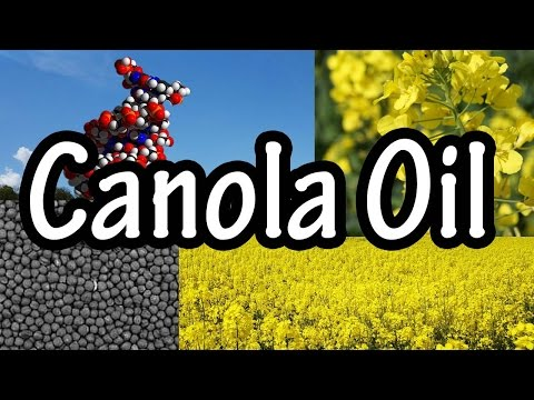 Canola Oil - What is Canola Oil - Canola Oil Nutrition