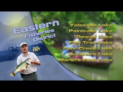 Fishing Report - July 14th, 2018