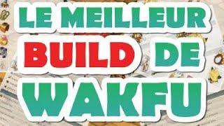 LE MEILLEUR BUILD DE WAKFU ?!