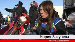 видео Гонки на собачьих упряжках в Карелии