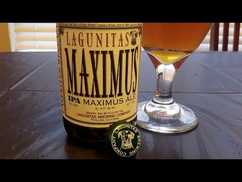 Lagunitas Maximus IPA (8.1% ABV) DJs BrewTube Beer Review #647