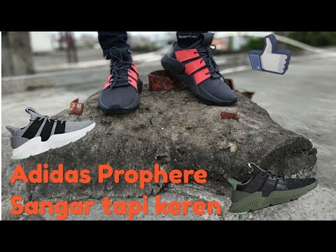 new product d5aa8 cb7d7 Adidas Prophere + Unboxing + On Feet