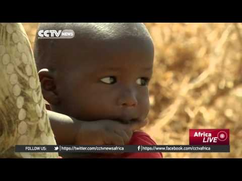 Thousands displaced as Ethiopia faces its worst food emergency in 50 years