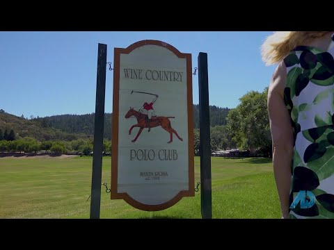 Wine Country Polo