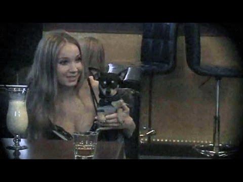 Девушка сняла бельё прямо в ресторане, чтобы соблазнить диджея. Соблазны - Познавательные и прикольные видеоролики