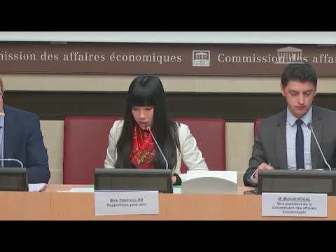Stéphanie DO - 2ème séance - PLF2019 - Cohésion des territoires 24/10/2018