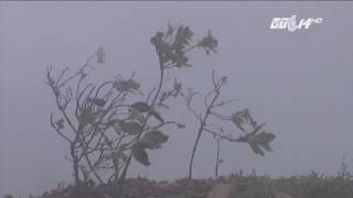 (VTC14)_Thời tiết miền Bắc trong 10 ngày tới: Ngày hanh khô, đêm rét đậm