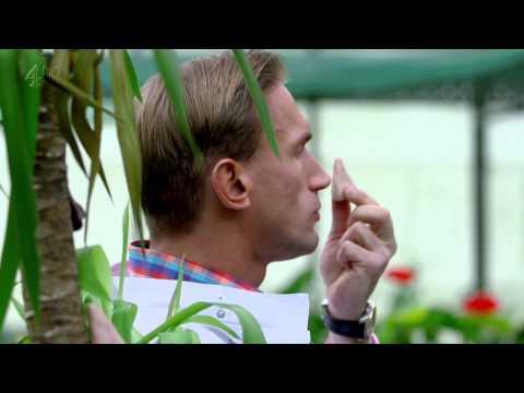 Embarrassing Bodies S09E01 720p HDTV