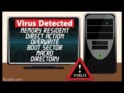 the types and dangers of computer viruses