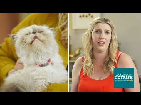 Cat Haters Spend 7 Days With Fluffy Mates