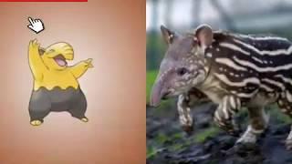 [Tổng Hợp] Pokemon Trong Phim Và Ngoài Đời Thật- Tổng Hợp Đôeramon💟💟