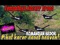 Pikat Burung Kacer Dapat Banyak Bro  Mp3 - Mp4 Download
