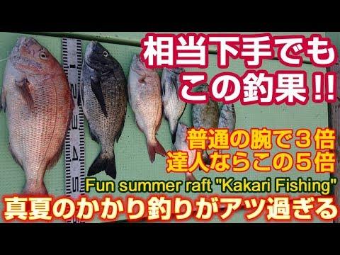 チヌ/黒鯛/真鯛真夏のかかり釣りは超高活性 | Midsummer Kakari fishing in Amakusa