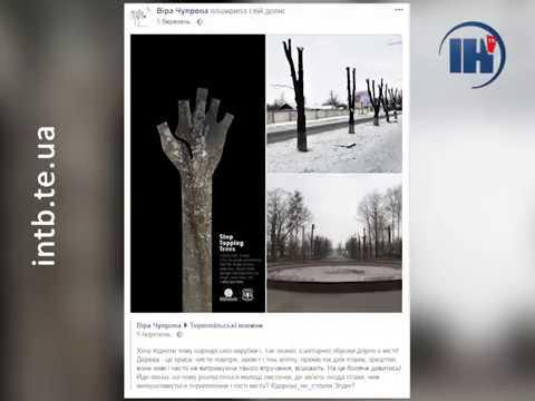 Телеканал ІНТБ: Більше трьохсот тернополян проголосували проти обрізки дерев