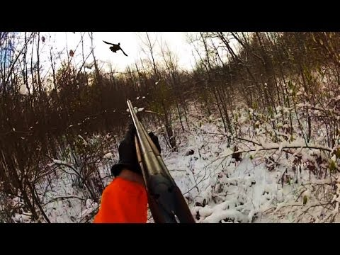 A Winter Grouse Hunt