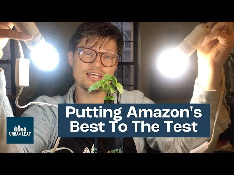 Grow Light Options For Indoor Plants: We're Putting Amazon's Best To The Test! (Part 1 Of 3)