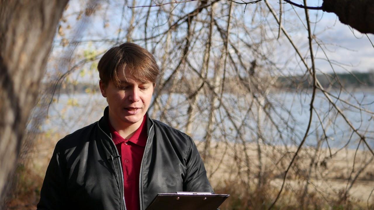 ДЕВА 2 событие 6-8 ноября Гороскоп