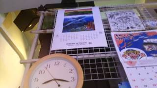 9月です!魚始めませんか?…(*^^*) http://www.sango-mania.com/gotanda/