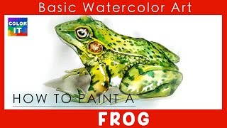 """""""How to Paint frog by water colorit"""""""