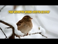 The north wind doth blow free nursery rhymes karaoke with lyrics mp3