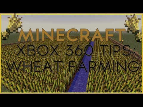 Minecraft Xbox 360 Tips, Tricks, and Games    Minecraft How to Grow Wheat
