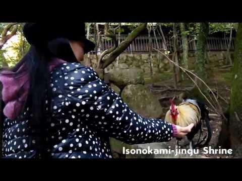 A Glimpse into the world of Minami Yoshida