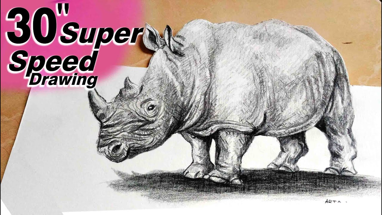 3d pencil drawing animal