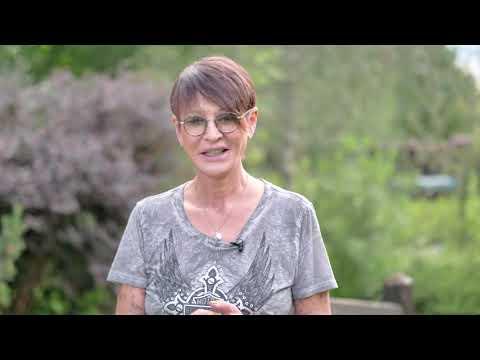 Ирина ХАКАМАДА   Как перестать работать бесплатно