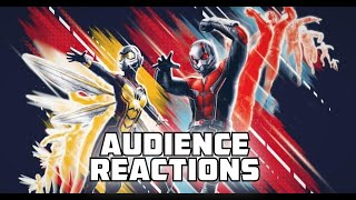 ANT-MAN and the WASP: Movie Night Reactions