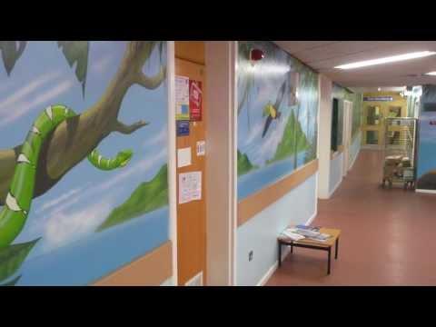 ART FOR THEIR SAKE - Alder Hey Hospital Murals