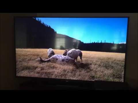 Ice Age Giants (Direwolf vs Sabertooth)