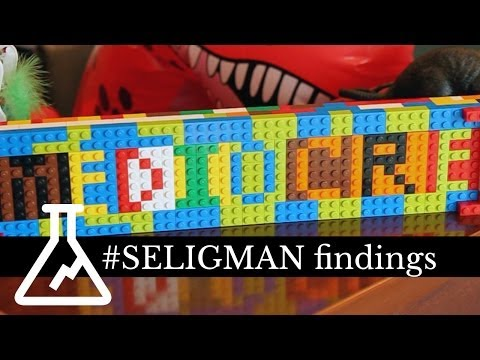 Findings: The Seligman Experiment