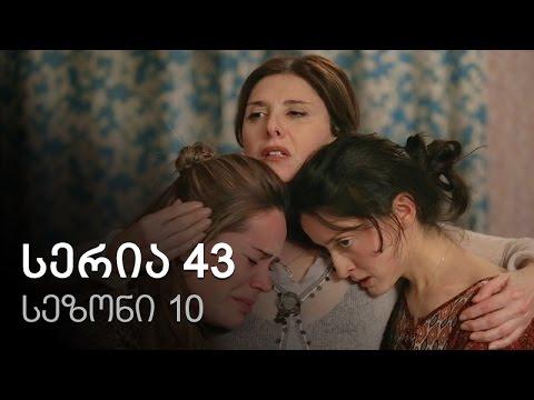 Cemi colis daqalebi - seria 43 (sezoni10)