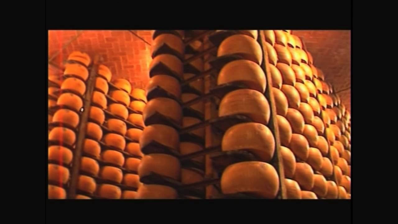 Retailer's Guide to Parmigiano Reggiano