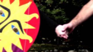 White Bird & Rainbow Rider Kites