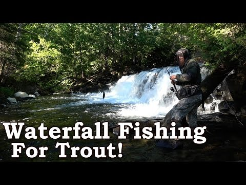 How To Fish A Water Fall For Brook Trout