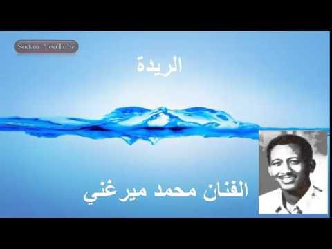 الفنان محمد ميرغني الريدة