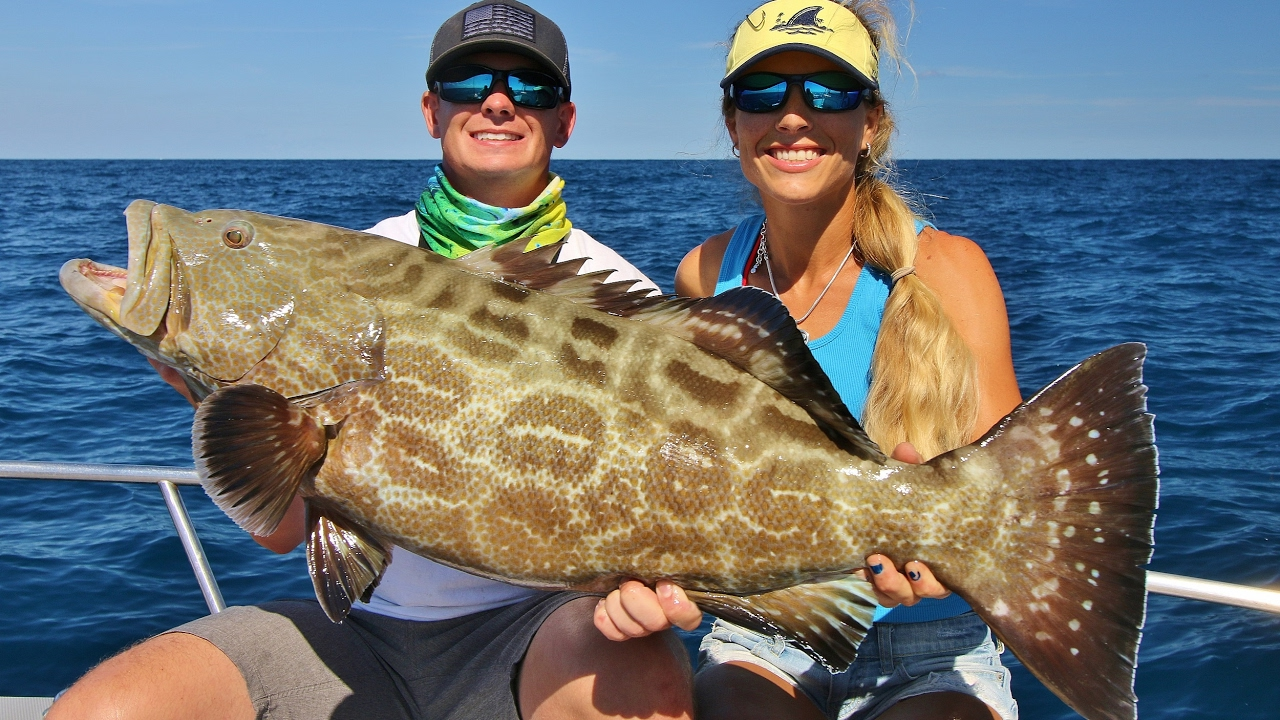 I ripped a huge gash in him florida offshore saltwater for Florida saltwater fishing